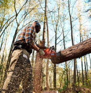 Best Chain Saw for Milling Slabs