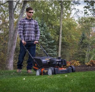 Best Lawn Mower for Town House