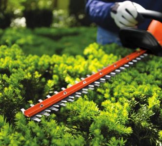 BLACK and DECKER 20V MAX Cordless Hedge Trimmer