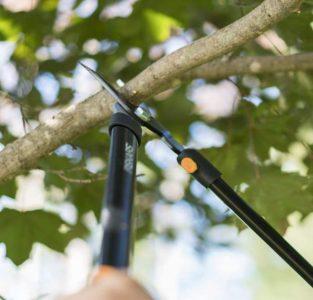 Fiskars Bypass Lopper for Blackberry Bushes