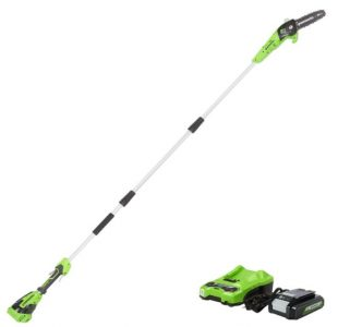 GreenWorks Cordless Pole Saw with batteries